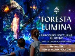 Forfait Foresta Lumina